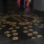 Jonas Druck großflächige Fußbodenbeschriftung im Bahnhof Frankfurt.